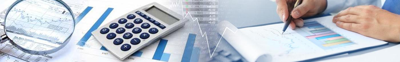 FINANCIAL STATEMENTS PREPARATION SERVICES
